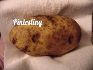 Outback Style Baked Potato - Dried - Pintesting