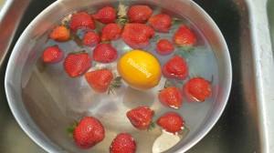 Vinegar wash - Pintesting
